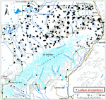 Occurrence map for marsh Labrador tea