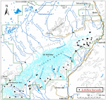 Occurrence map for boreal yarrow
