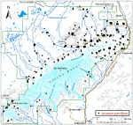 Occurrence map for windflower