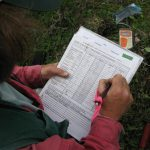 researcher collecting vegetation data