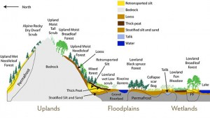 Bonanza Creek diagram