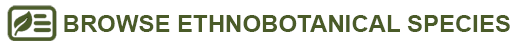 browse ethnobotanically important species button
