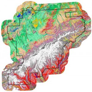 landcover map