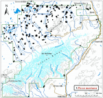 Occurrence map for black spruce