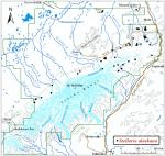 Occurrence map for Alaska starwort