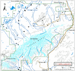 Occurrence map for yellow marsh marigold