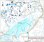 Occurrence map for leatherleaf