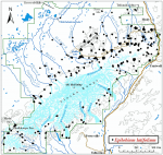 Occurrence map for dwarf fireweed